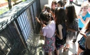 Elevii basarabeni admiși la liceu în România 2011