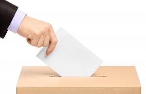 Să mergem la vot, să ne facem viitorul!